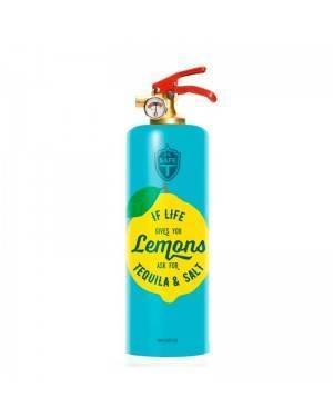 Fire extinguisher SAFE-T