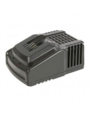 RATIO Share System 20 V-2.0 / 4.0 Ah battery charger.