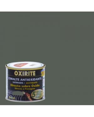 Xylazel Oxirite Satin Antioxidant Paint