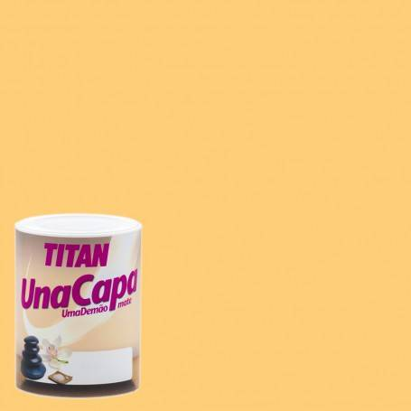 Titan Titan Matte Paint One Layer