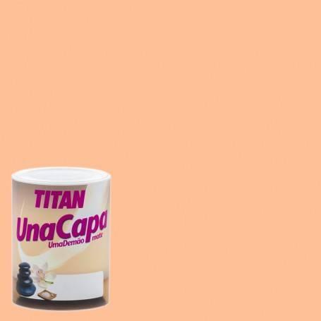 Titan Titan Matte Paint One Layer